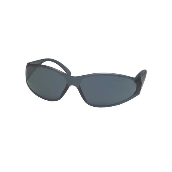 ERB Boas Safety Glasses with Gray Frame and Gray Lens